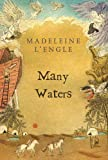 Image of Many Waters (Madeleine L'Engle's Time Quintet)
