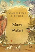 Many Waters (Madeleine L'Engle's Time Quintet) by Madeleine L'Engle cover image