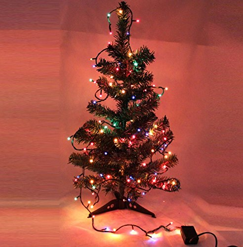 Gorgeouseve 3M(10Ft) Black Line 100-Count Colorful Led Light String Beautiful Christmas Tree Lights Xmas Holiday Decoration With 110V Plug
