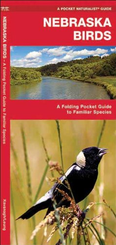 Nebraska Birds: A Folding Pocket Guide to Familiar Species (Pocket Naturalist Guide Series)