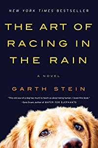The Art Of Racing In The Rain by Garth Stein ebook deal