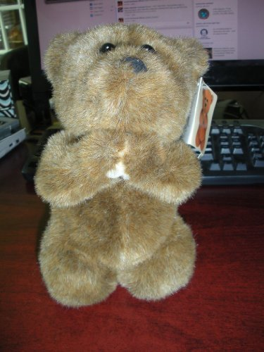 "Bearing Blessings Bless You Plush Teddy Bear (9"" tall - kneeling down or praying)"