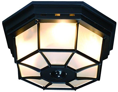 Image Result For Octagonal Black Motion Sensor Outdoor Ceiling Light