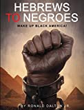 img - for HEBREWS TO NEGROES: WAKE UP BLACK AMERICA! book / textbook / text book