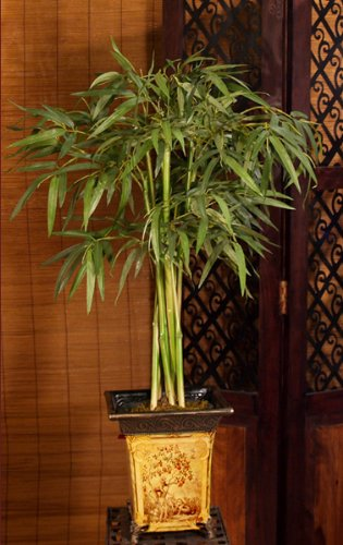 Silk Bamboo Tree in Asian Dcor Planter GR118-62