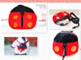 Baby Toddler Safety Harness Rein Backpack Walker Strap RUNNER LADYBUG