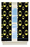 Warner Bros. Batman After Dark Room Darkening Window Panel, 42 by 63-Inch