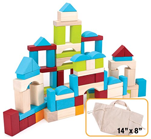100 Piece Wooden Block Set with Carrying Bag by Imagination Generation (Wooden Building Fun Set compare prices)