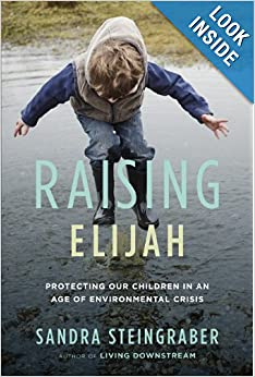 Raising Elijah: Protecting Our Children in an Age of
