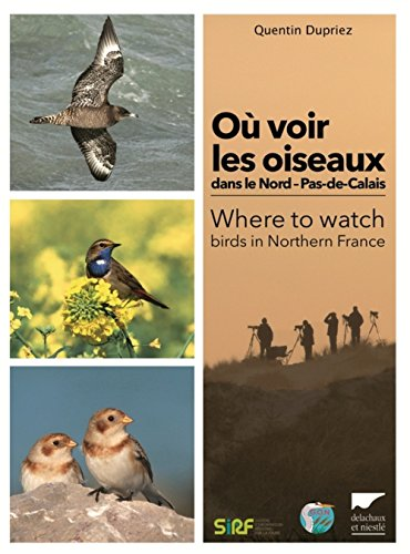 Où voir les oiseaux dans le Nord-Pas-de-Calais