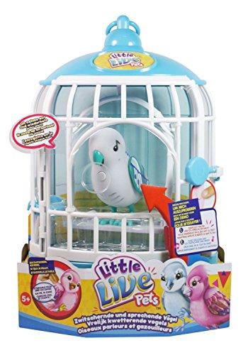 Spielzeug vogel der spricht oder singt empfehlenswerte