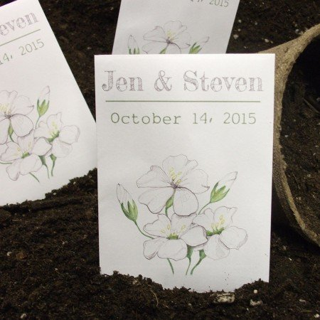 Personalized Seed Packet Favors - Baby'S Breath White