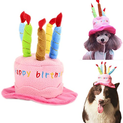 Bro Bear Dog Birthday Hat with Cake & Candles Design Party ...
