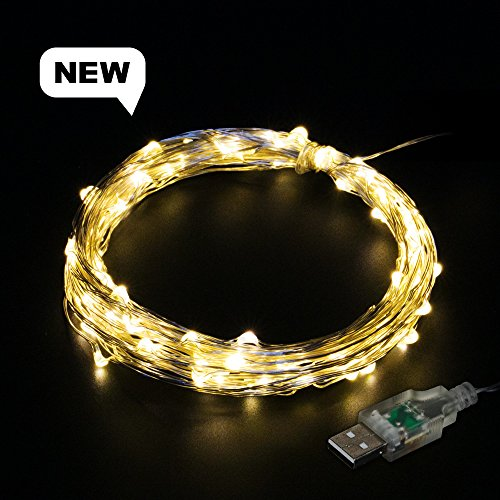 E-foxer Christmas tree Lights USB string lights 39.6 Feet 100 LED waterproof Festival wedding party birthday decoration starry Copper Wire Lights indoor/outdoor (Warm White)