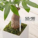 植物用水分計サスティーLサイズホワイト 1個セット[色の変化で水やりのタイミングをお知らせ!]