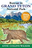 img - for Rescue in Grand Teton National Park book / textbook / text book
