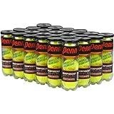 Penn 1 Championship Tennis Balls Pack of 24 by Penn