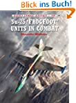 Su-25 'Frogfoot' Units In Combat (Com...
