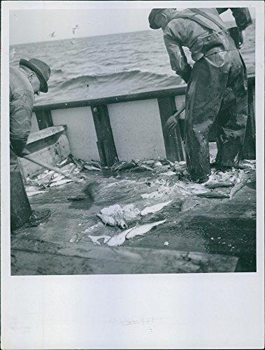 vintage-photo-of-two-fishermen-gathering-the-fish-theyve-caughtfisherman1945