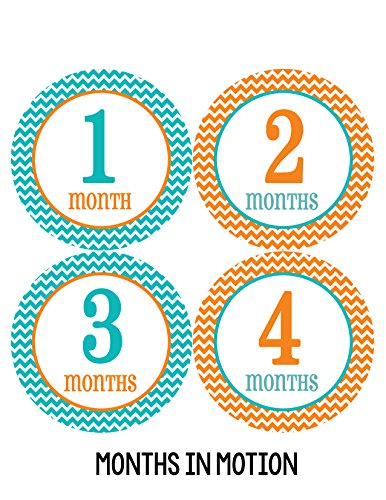 Months in Motion 209 Baby Month Stickers Gender Neutral Chevron Months 1-12