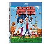 echange, troc Tempête de boulettes géantes [Blu-ray]