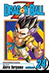Dragon Ball Z, Vol. 24: Hercule to th...