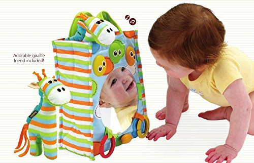 Baby Musical Toy: Carry Along Tote With Mirror And Giraffe Plush - Attaches To The Crib