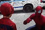 Image de The Amazing Spider-Man + The Amazing Spider-Man: Le destin d'un héros [B