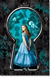 Alice in Wonderland Movie Poster Alice Kingley The Mad Hatter The Red Queen 22x34