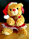 Mrs. Claus Santa Bear 10
