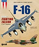 The F-16 Fighting Falcon - Vol. 2 (Great American Combat Aircraft)
