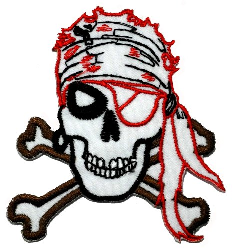 Pirate Skull Diy Applique Embroidered Sew Iron On Patch Pr-04 front-413575