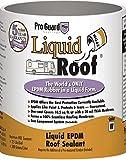 Liquid Roof RV Roof Coating & Repair 1 Gallon