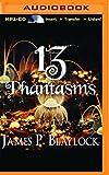 img - for 13 Phantasms book / textbook / text book