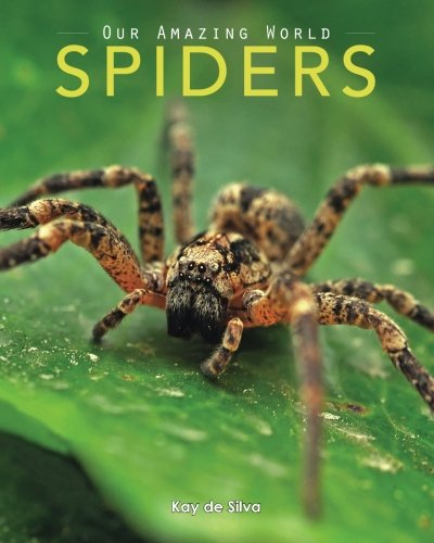 spiders-amazing-pictures-fun-facts-on-animals-in-nature-our-amazing-world-series