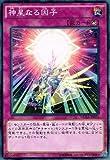 遊戯王アーク・ファイブ / 神星なる因子 / ザ・デュエリスト・アドベント/シングルカード