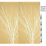 GreenFloralCrafts Birch Branches (Pack of 12 Stems), 3-4', Snowy White (Color: Snowy White, Tamaño: 3-4 ft Tall, Pack of 12-14 Stems)