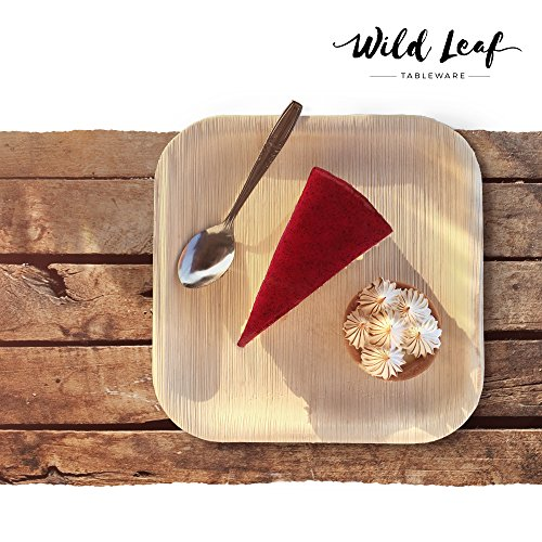Previous · / Next  sc 1 st  Compostable Plates & All Natural Palm Leaf Plates 25 Pack / 10 Inch. Elegant and Eco ...