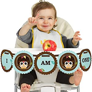 Owl - Look Whooo's Having A Birthday - High Chair Birthday Banners