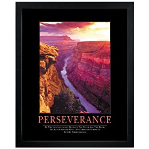 Motivational Posters Perseverance on Com  Successories Perseverance Motivational Poster  Office Products