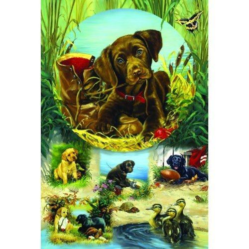 Cheap SunsOut Pond Puppies 625pc Family Jigsaw Puzzle by Linda Picken (B0037G10LC)