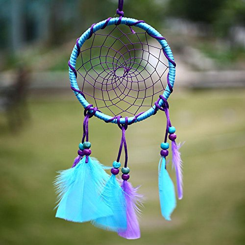 Dremisland Circle-shaped Dream Catcher with Feathers Wall Hanging Decoration Ornament for Wall Hanging