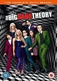 BIG BANG THEORY SEASON 6 [Reino Unido] [DVD]
