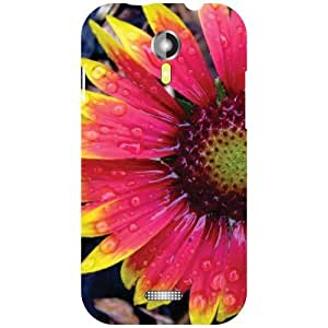 Micromax A117 Canvas Mag Back Cover - Abstract Designer Cases