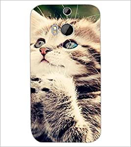 HTC ONE M8 CAT Designer Back Cover Case By PRINTSWAG