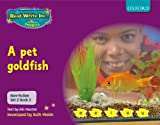 Gill Munton Read Write Inc. Phonics: Non-fiction Set 2 (Purple): A pet goldfish