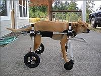 老化や病状の進行で4肢とも弱く自力で立っていられない愛犬のための「K-9 カスタム」 4肢サポート車いす 27.1〜40kg