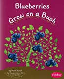 img - for Blueberries Grow on a Bush (How Fruits and Vegetables Grow) book / textbook / text book