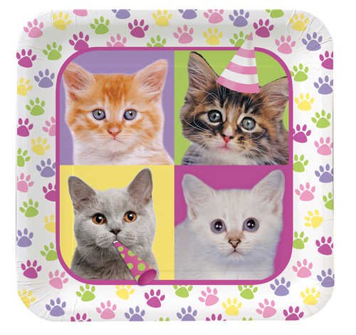 Creative Converting Purr-Ty Time Square Dinner Plates, 8-Count