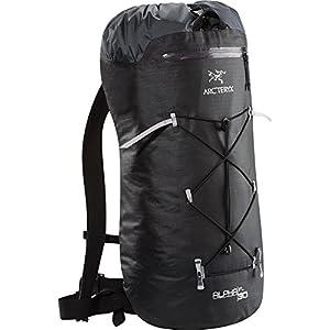 (アークテリクス)ARC\'TERYX Alpha FL 30 Backpack Black